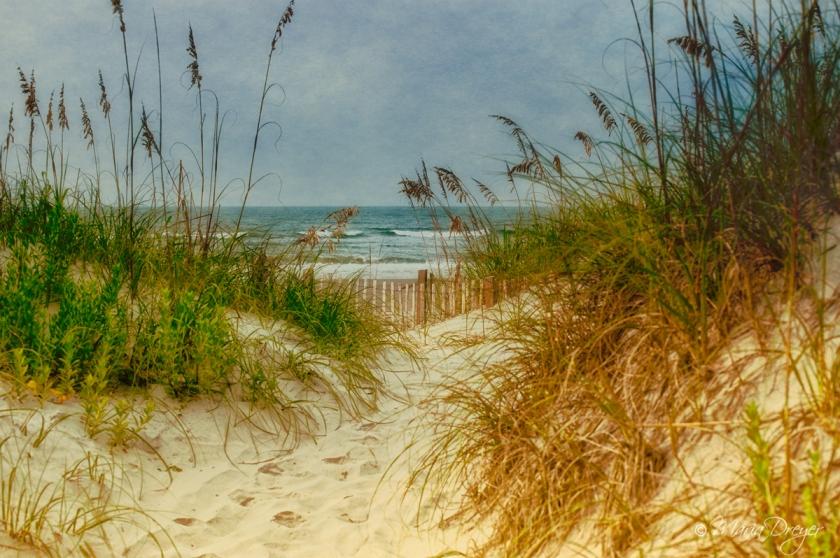 Dune-Way