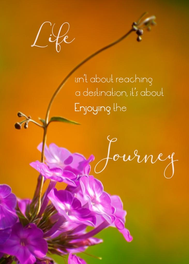 Lifes-Journey